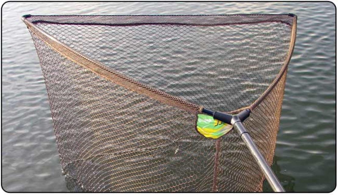 Bass for Fish net company